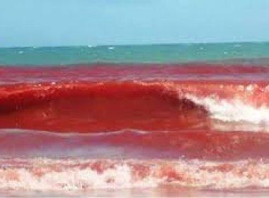 mare vermelha